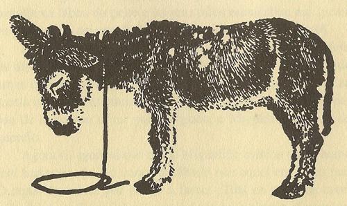 O burro non bulía nin chisco - Cousas de Castelao